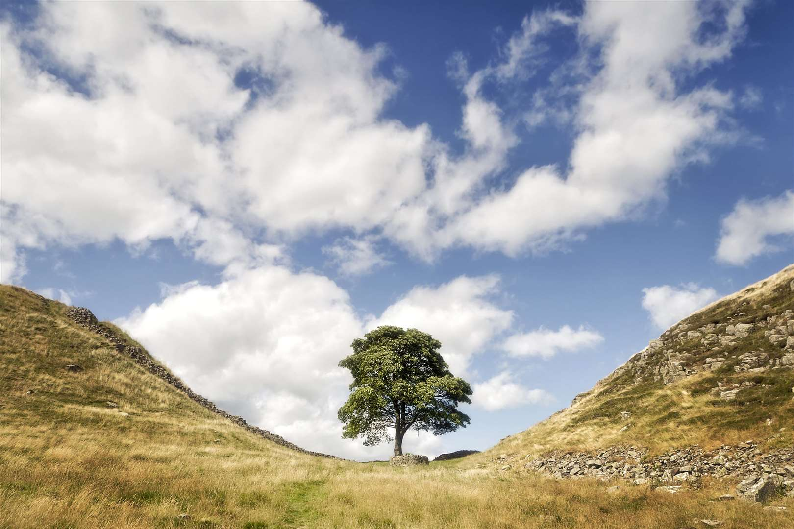 One of the most famous points on Hadrian's Wall – Sycamore Gap. Picture: PA Photo/iStock