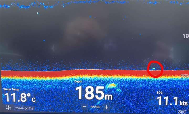 Sonar-Diagramm Loch Ness