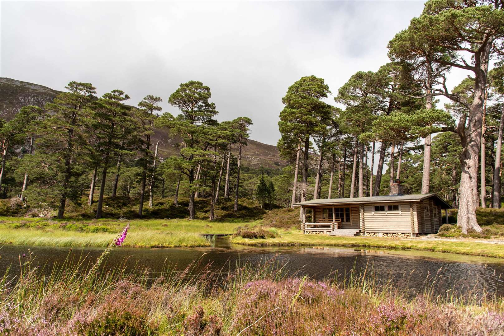 The Honka Hut in the Ballochbuie Forest is a favourite of the Queen. Picture: PA Photo/Sarah Marshall