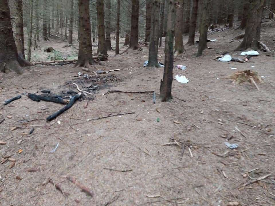 Rubbish is strewn all over Craig Phadrig forest.