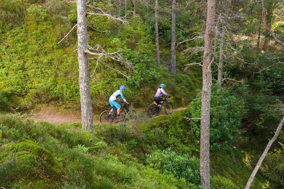 Moray Monster Trails.Picture: Forestry and Land Scotland