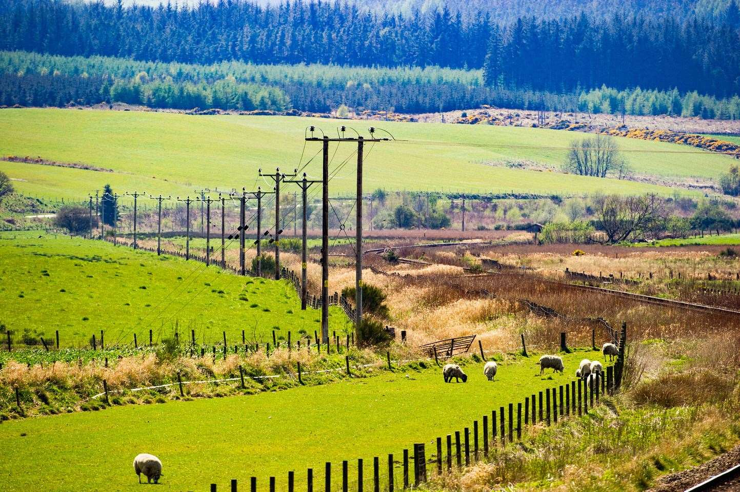 Community projects and individuals can apply for funding to connect to the electricity network in the north of Scotland.
